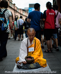 Monkmeditatingtaiwan