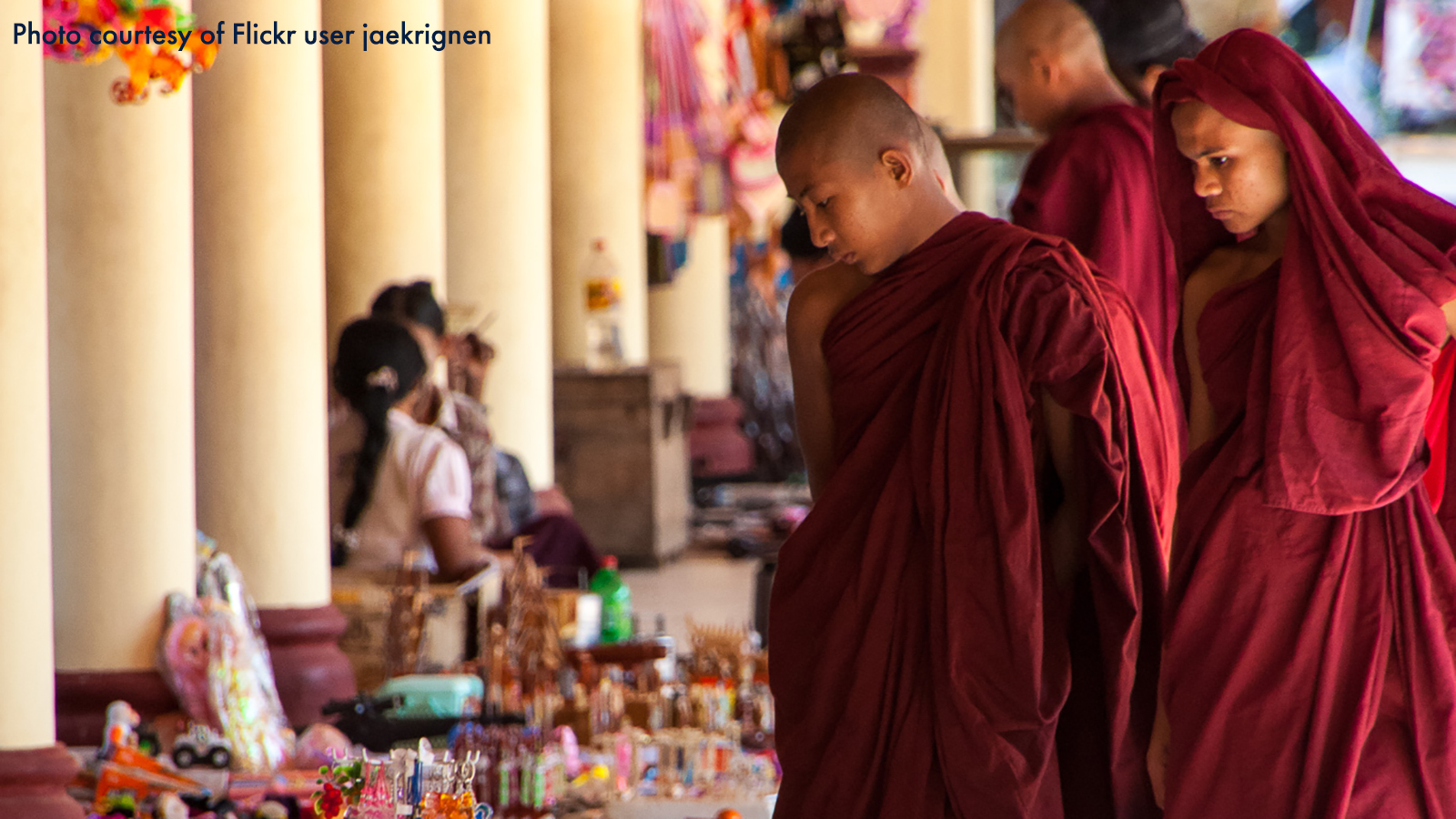 Buddhist monks in red robes looking at offerings as they walk