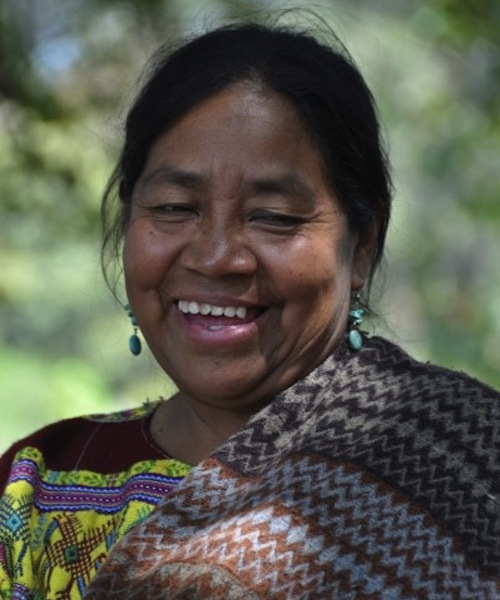 The COVID-19 Pandemic and Its Impact on Women in Guatemala