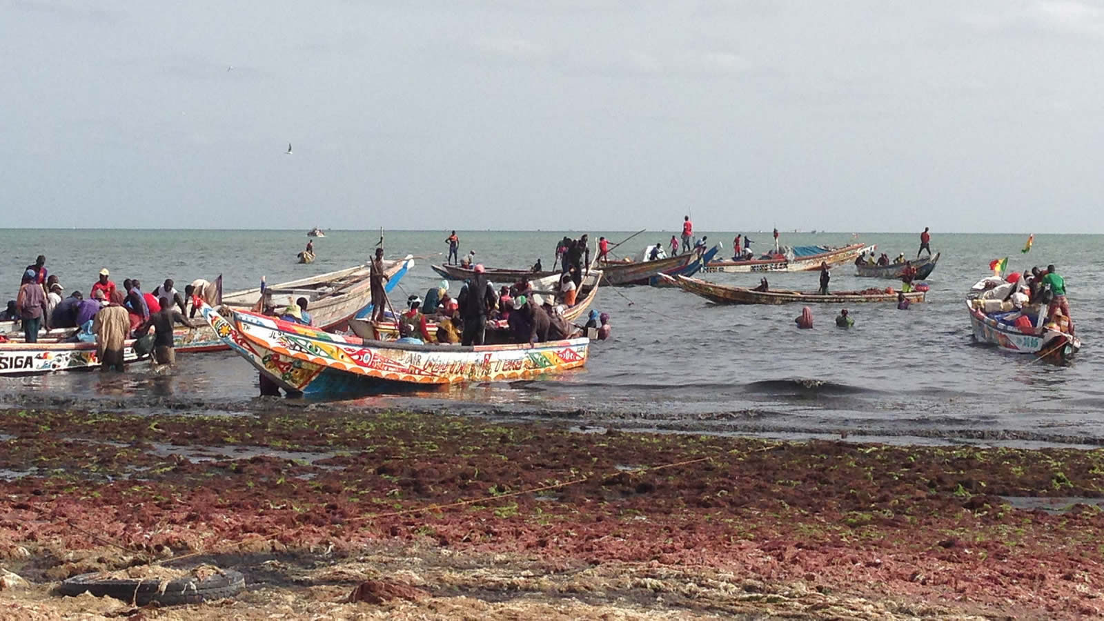 Colorful Boats on the Shoreline in Senegal