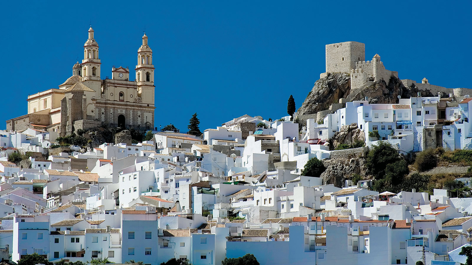 Cathedral, Fort, and White Buildings in Andalucia, Spain
