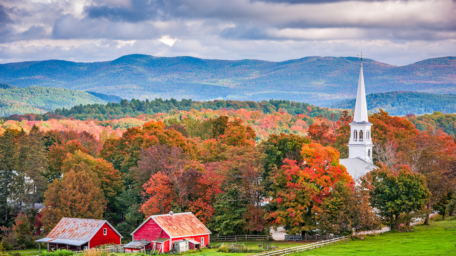 White Church Steeple and Red Barns amongst Fall Foliage in Vermont