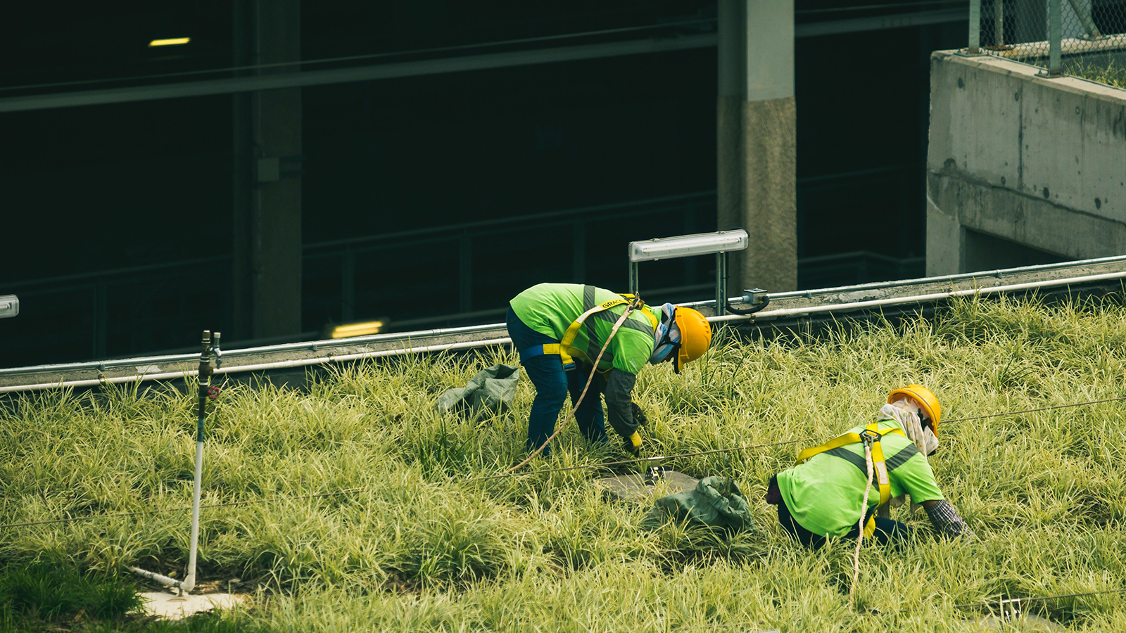 Construction workers on a building in masks.