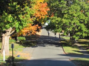 Early fall foliage, Lenox, MA October 2016