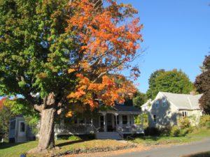 Early fall foliage, Lenox, MA October 2016