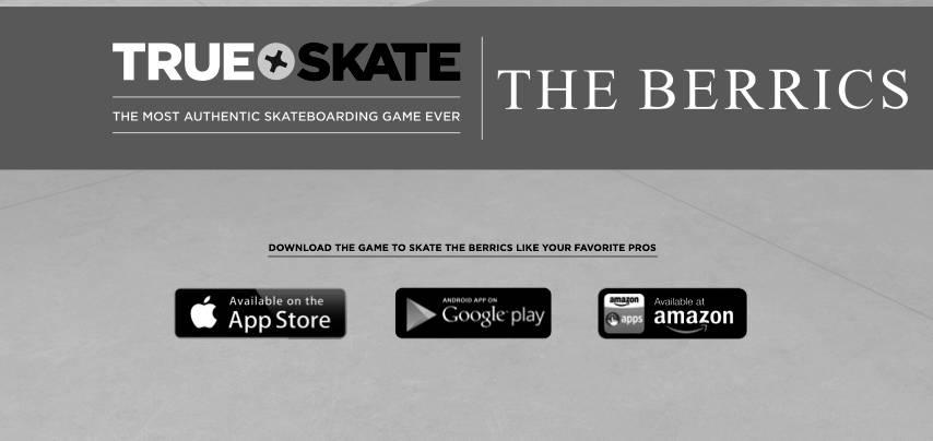 True Skate The Berrics Level