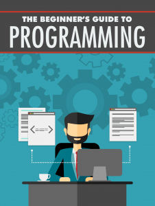 The-Beginner_s-Guide-to-Programming-226×300