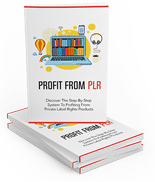 ProfitFromPLR mrr Profit From PLR