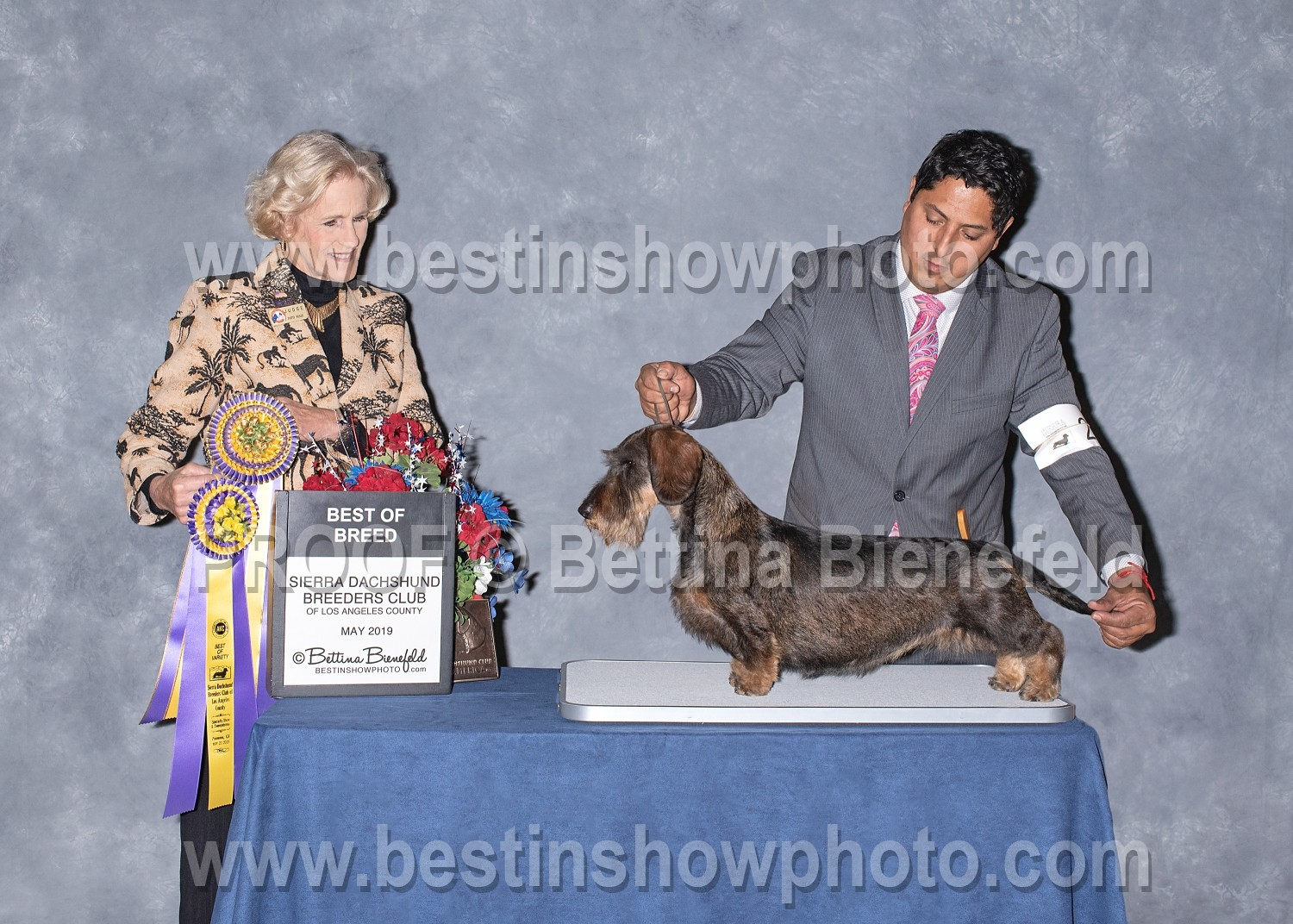 Sierra Dachshund Breeders Club ~ May 2019