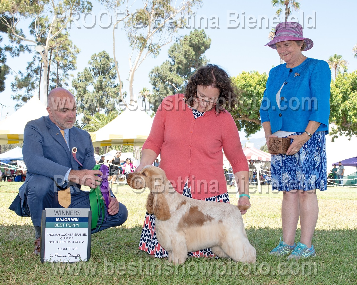 English Cocker Spaniel Club of Southern California ~ August 24, 2019