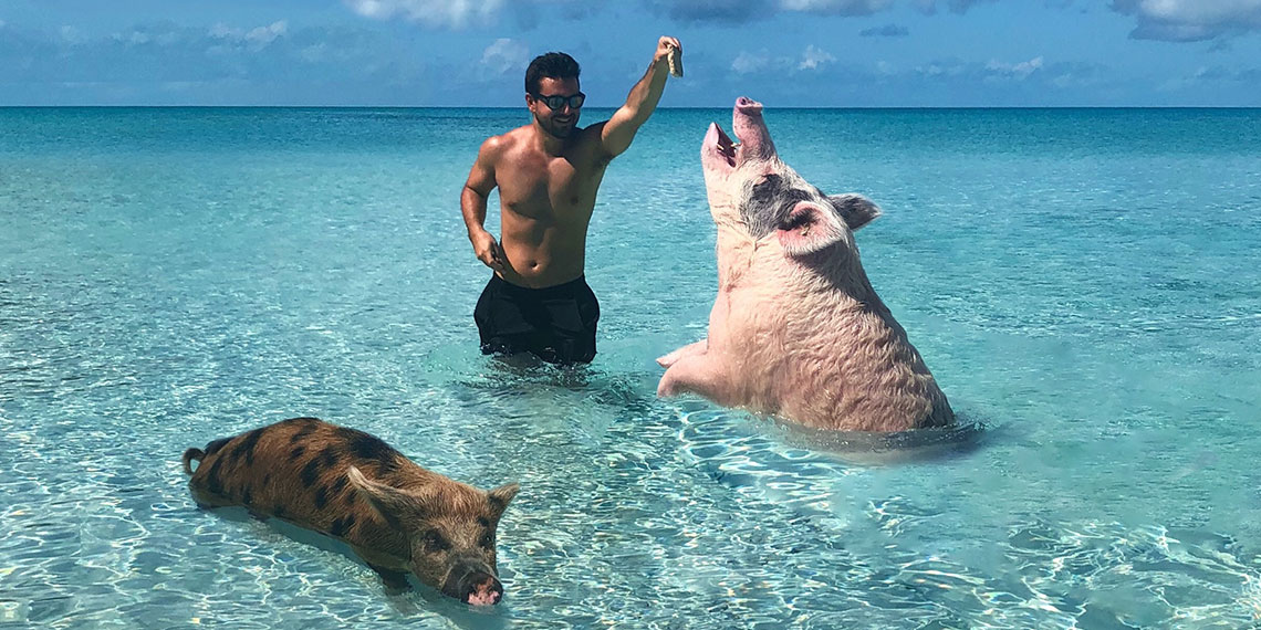 What It's Actually Like To Swim With the Pigs In The Bahamas
