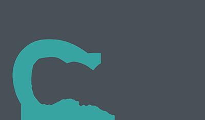 Original transparent small dolphin logo