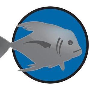 Tsunami on 9th logo