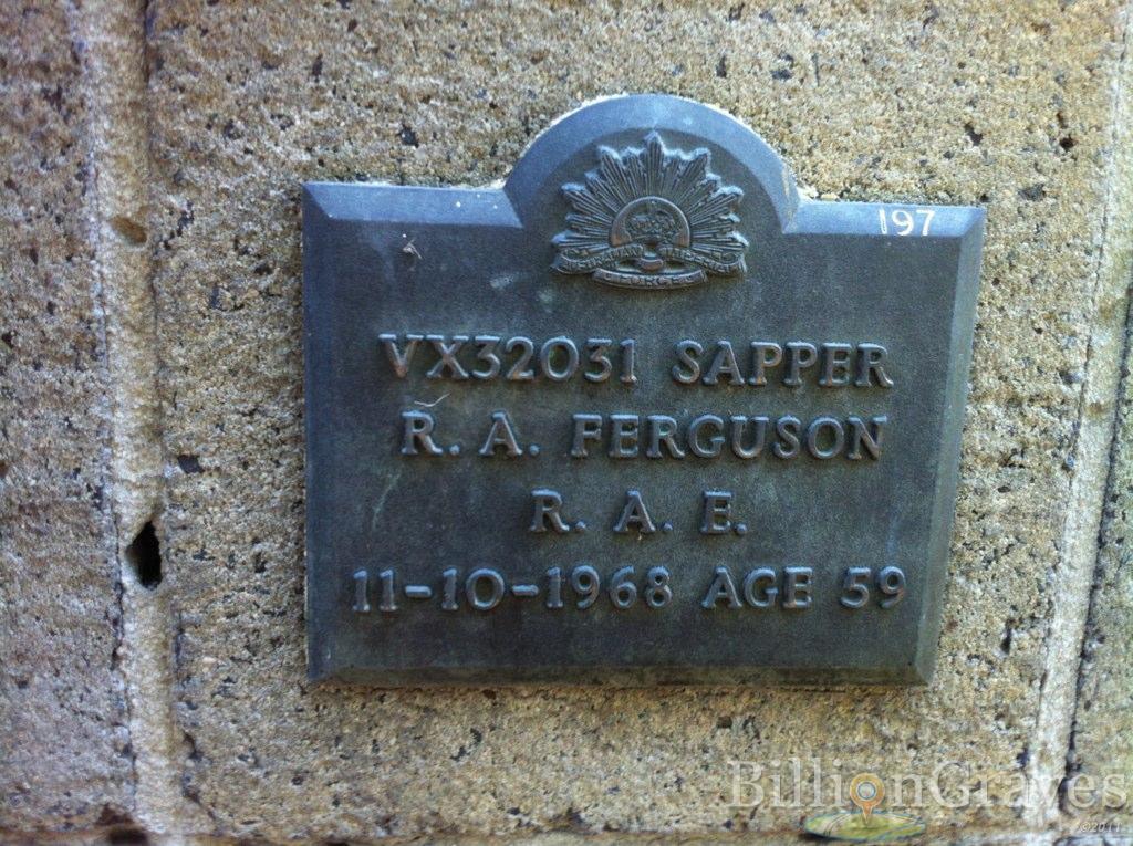R A Ferguson