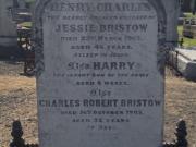 Charles Robert Bristow