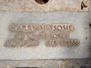 Harry M Tsosie