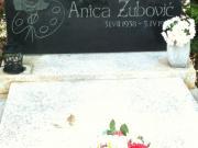 Anica Zubović