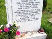 Stephen James Davis