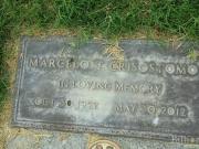 Marcelo T Crisostomo