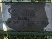David A Abad