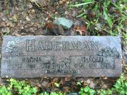 Harold Haberman
