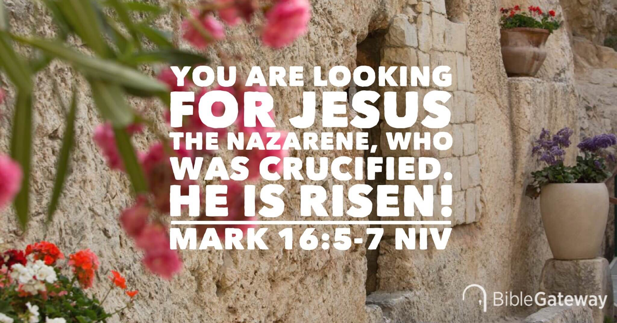 Image result for he is risen pictures
