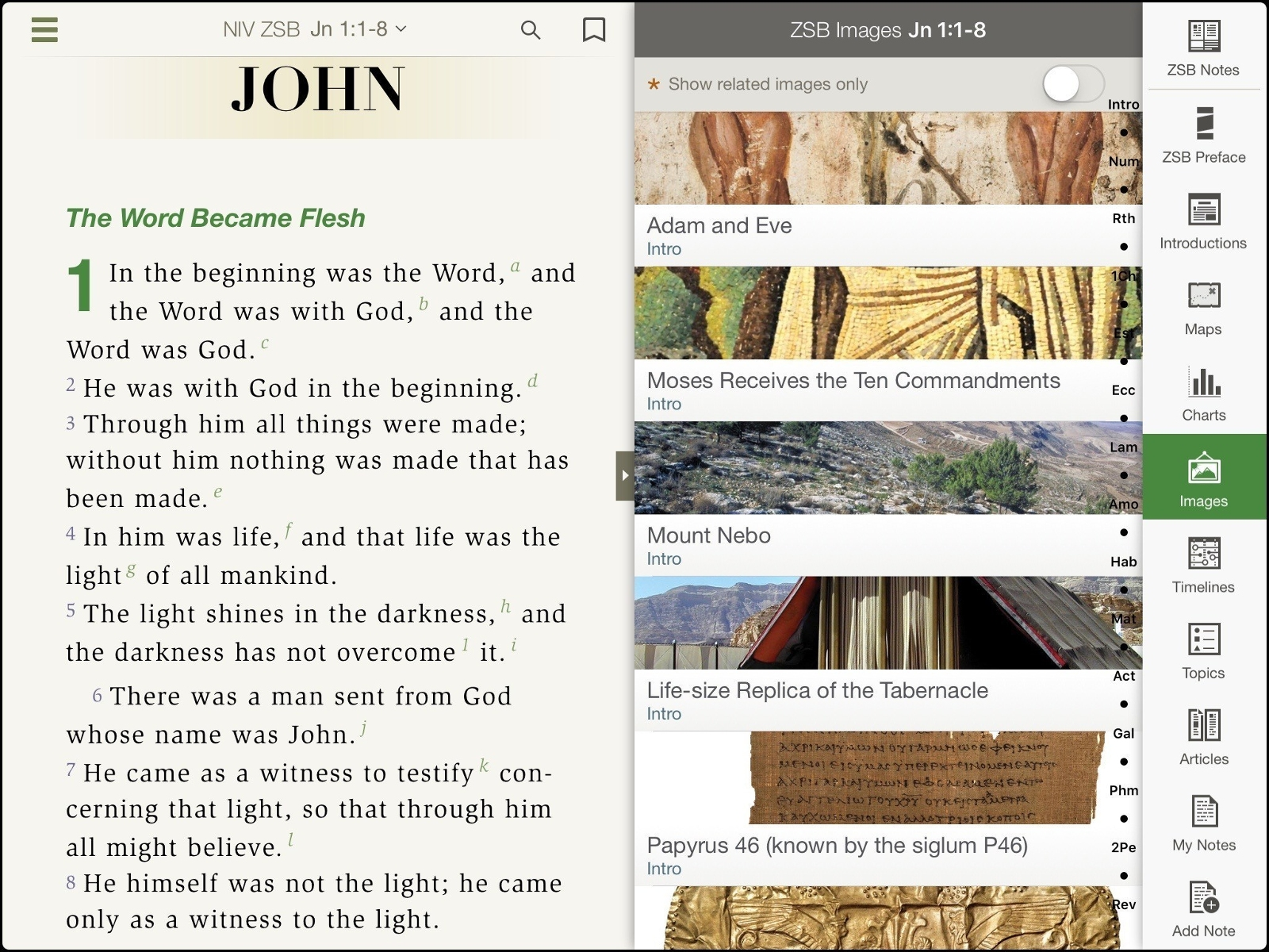 Click to enlarge this image of the NIV Zondervan Study Bible iOS App