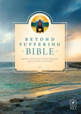 Buy your copy of the Beyond Suffering Bible in the Bible Gateway Store
