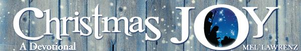 christmas-joy16