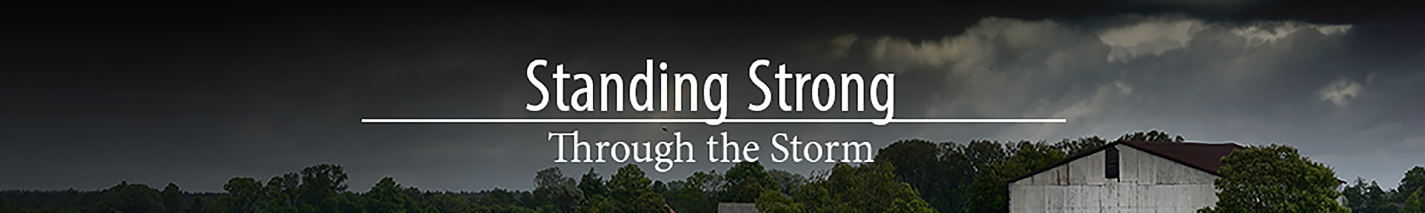 Standing Strong Through the Storm