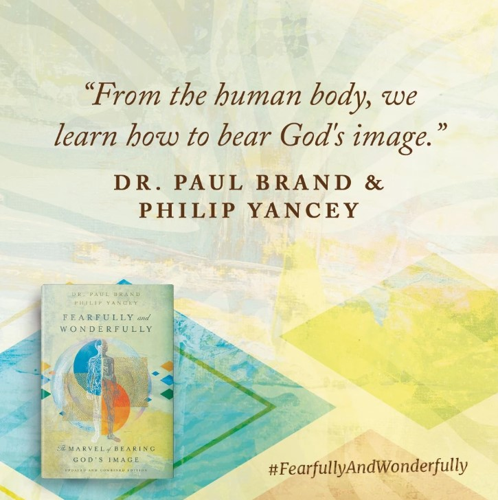 Buy your copy of Fearfully and Wonderfully in the Bible Gateway Store where you'll enjoy low prices every day