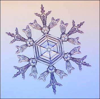 An image of a single snowflake
