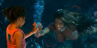 The Water Phoenix 2