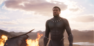 T'Challa in the Black Panther Trailer