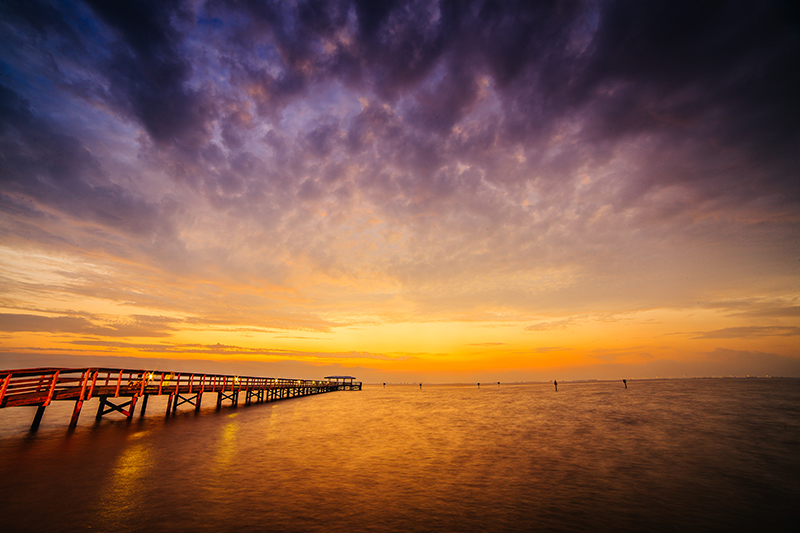 tampa bay's beautiful beaches
