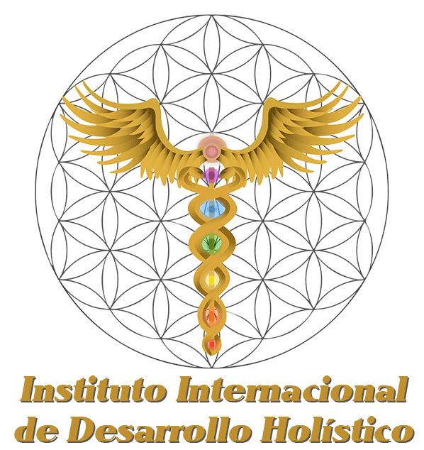 Instituto internacional de desarrollo holistico completo