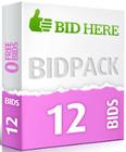 12bids