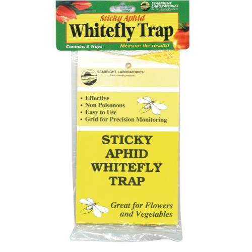 Sticky Whitefly Trap 3/Pack (24/Cs)