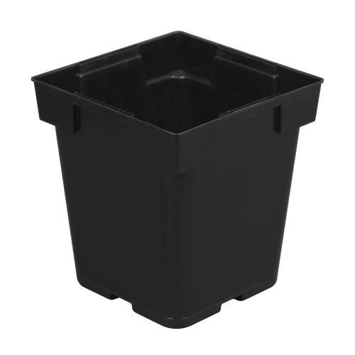 Black Square Pot (Jumbo Senior) 5 in x 5 in x 6.5 in (200/Cs)