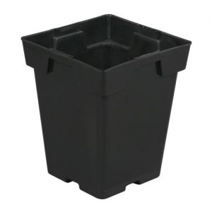 Black Square Pot (Magnum) 6 in x 6 in x 7 in (150/Cs)