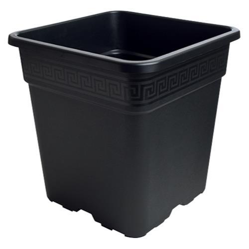 Black Square Pot 1 Gallon