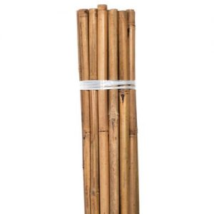 Bond Natural Bamboo HD Stakes 6 ft (6/Bag)