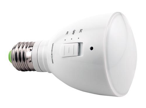AgroLED 4 Watt Green Flashlight/Lamp AC/DC Rechargeable (20/Cs)