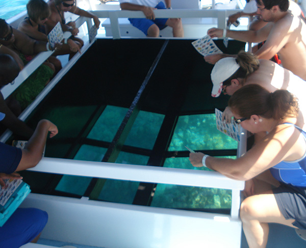 Product Glass Bottom Boat