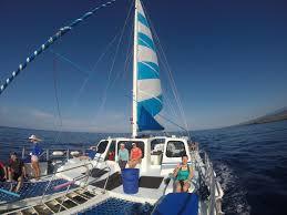 Product Morning Trimaran Capt Cook Snorkel Cruise