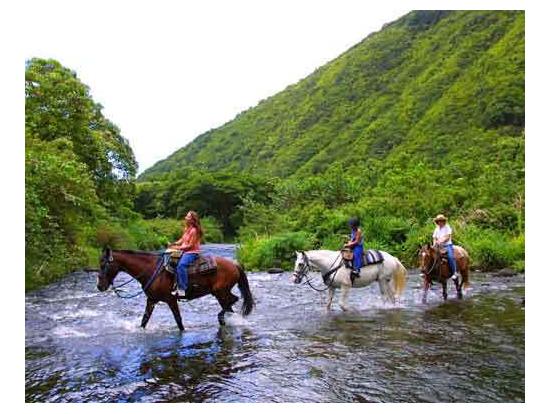 Product Waipio On Horseback