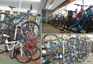 Sarto Gagne Bike Shops Bikenation Ca
