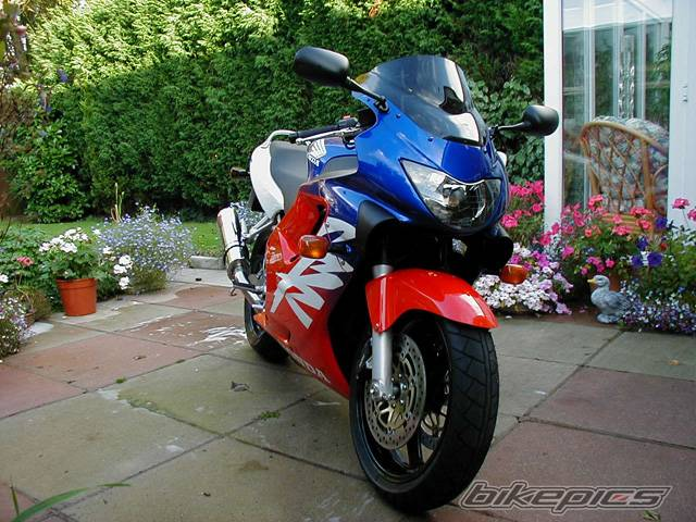 2000 HONDA CBR 600 | Picture 4585 motorcycle photo
