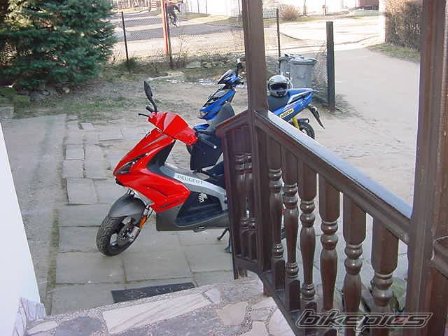 2003 PEUGEOT JET FORCE | Picture 274941 motorcycle photo