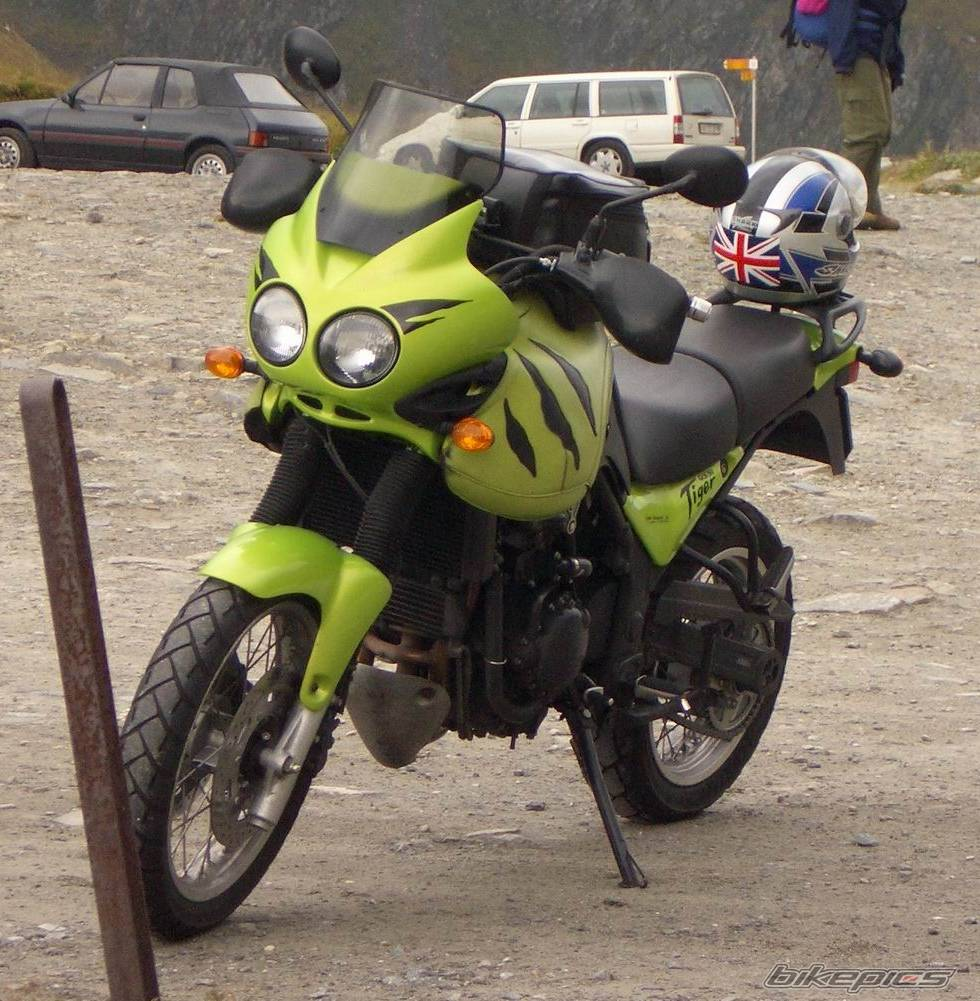 2001 TRIUMPH TIGER | Picture 380001 motorcycle photo